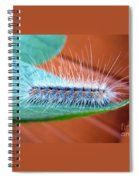 Good Hair Day Spiral Notebook