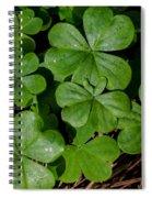 Good Luck 2 Spiral Notebook