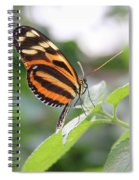 Good Morning Butterfly Spiral Notebook