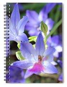 Good Morning My Fairy Spiral Notebook