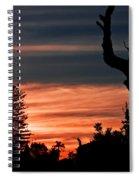 Good Night Trees Spiral Notebook