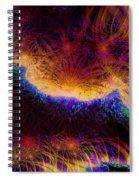 Good Night Vincent Spiral Notebook