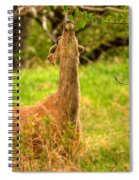 Good To The Last Leaf Spiral Notebook
