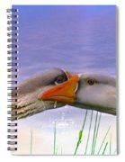 Goose Kiss - Featured In Comfortable Art - Nature Wildlife - Wildlife Groups Spiral Notebook