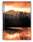 Goose On Golden Ponds 1 Spiral Notebook
