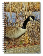 Goose On The Edge Spiral Notebook