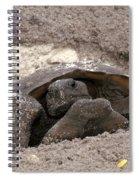 Gopher Tortoise Spiral Notebook
