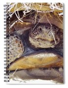 Gopher Tortoise Spiral Notebook
