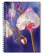 Gorgeous Orchid Spiral Notebook