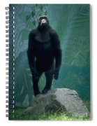 Gorilla Rock Spiral Notebook