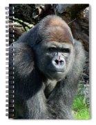 Gorilla135 Spiral Notebook