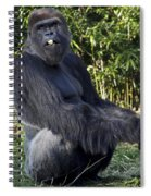 Gorillas In The Mist Spiral Notebook