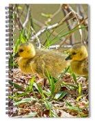 Little Ones Spiral Notebook