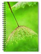Gossamer Umbrellas Spiral Notebook