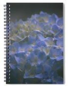Got The Blues For You Spiral Notebook