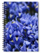 Got The Iris Blues Spiral Notebook
