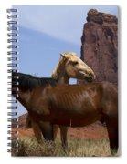 Got Your Back Spiral Notebook