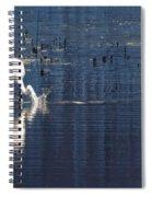 Gotcha Spiral Notebook