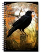 Gothic Fish Eye Spiral Notebook