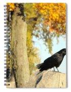 Three Ravens On A Gothic Graveyard Day Spiral Notebook