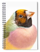 Gouldian Finch Erythrura Gouldiae Spiral Notebook