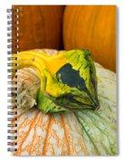 Gourd Pair Spiral Notebook