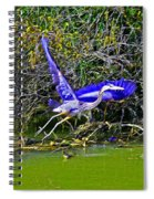 Gr8 Heron Flight Spiral Notebook