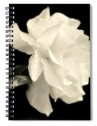 Grace Of Creation Spiral Notebook