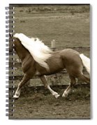 Graceful  Spiral Notebook