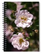 Graceful Duo Spiral Notebook