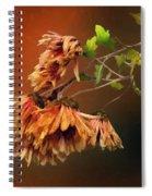 Graceful Fade Spiral Notebook