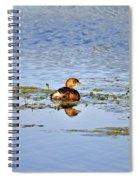Graceful Grebe Spiral Notebook