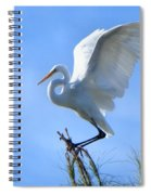 Graceful Landing Spiral Notebook