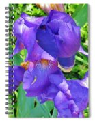 Graceful Love Spiral Notebook