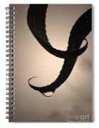 Gracefully Spiral Notebook