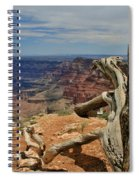 Grand Canyon And Dead Tree 1 Spiral Notebook