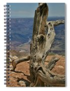 Grand Canyon And Dead Tree 2  Spiral Notebook