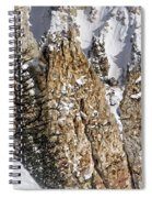 Grand Canyon Of Yellowstone Spiral Notebook