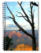 Grand Canyon Tree Spiral Notebook
