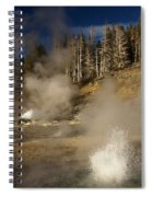 Grand Geyser Group Spiral Notebook