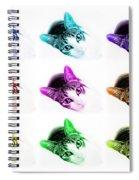 Grand Kitty Cuteness 3 Pop Art 9 Spiral Notebook