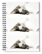 Grand Kitty Cuteness Bw 9 Spiral Notebook