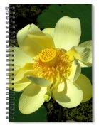 Grand Opening Spiral Notebook