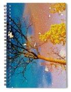 Grand Reflections # 1 Spiral Notebook