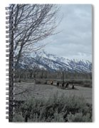 Grand Tetons Landscape Spiral Notebook