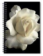 Grandeur Ivory Rose Flower Spiral Notebook