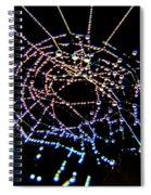 Grandmother Spider's Dream Catcher Spiral Notebook