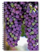 Grape Bunches Portrait Spiral Notebook