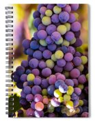 Grape Bunches Wide Spiral Notebook