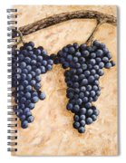 Grape Vine Spiral Notebook